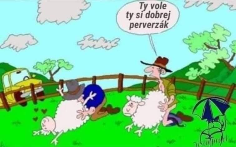 http://suzukibandit.cz/openforum/uploads/537_ovecky.jpg
